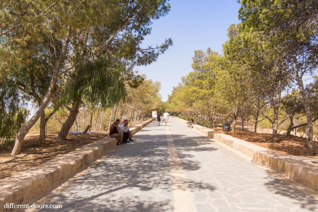 Mount Nebo Path