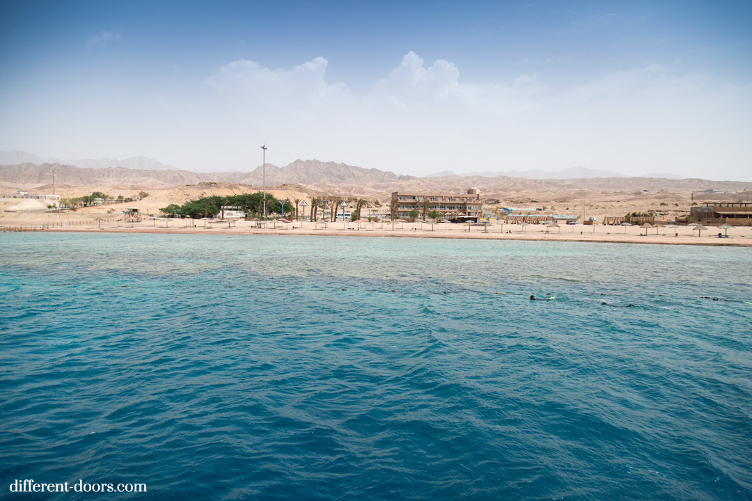 Snorkelling in the Red Sea, Aqaba